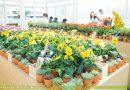 Kiehl's Made Better藥房:在空中温室實行環保與親近自然吧!