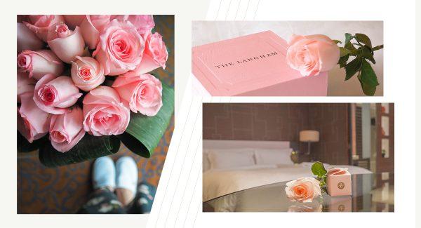 【上海住宿】滿溢的粉紅寵愛 上海新天地朗廷酒店