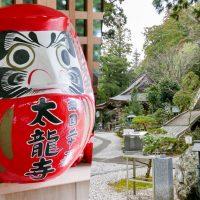 【日本德島】淨化身心靈!空海大師四國遍路巡禮+隱藏景點