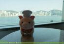 【旅居香港】#18 海景嘉福洲際酒店 InterContinental Grand Stanford Hong Kong