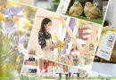 在古蹟裡享受鳥語花香:復活節連假,來大館參加一場繁花盛宴吧!